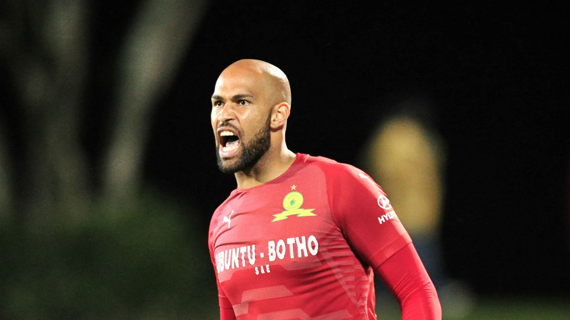 KAIZER CHIEFS are reportedly planning a January swoop on Mamelodi Sundowns for former keeper Reyaad Pieterse